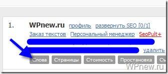 www_seopult_ru