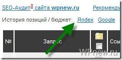 Узнать позицию сайта в Яндексе
