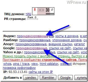 проверка индексации сайта