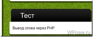 Вывод PHP виджет wordpress