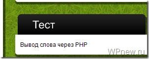 Вывод PHP виджет wordpress