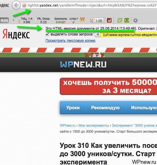 Страница в индексе Яндекса