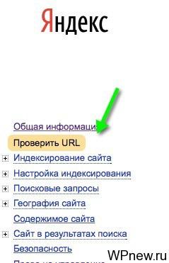 Вывести метки WordPress