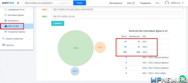 URL vs URL в Serpstat